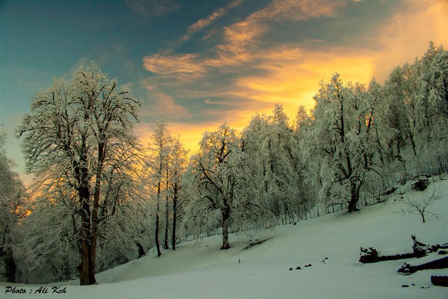 هنر عکاسی زمستان ali kch