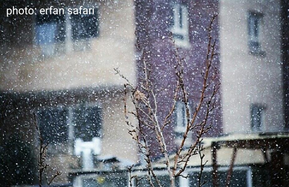 هنر عکاسی زمستان Arena