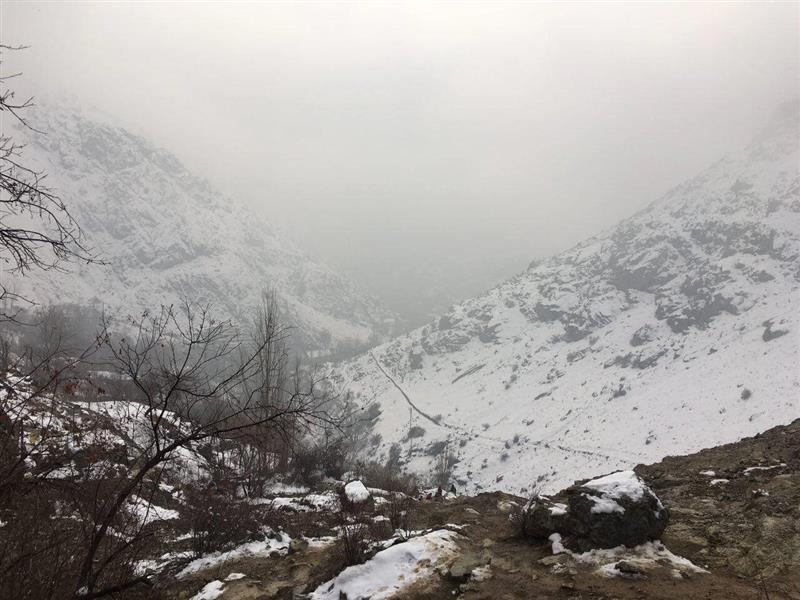 هنر عکاسی زمستان Arman