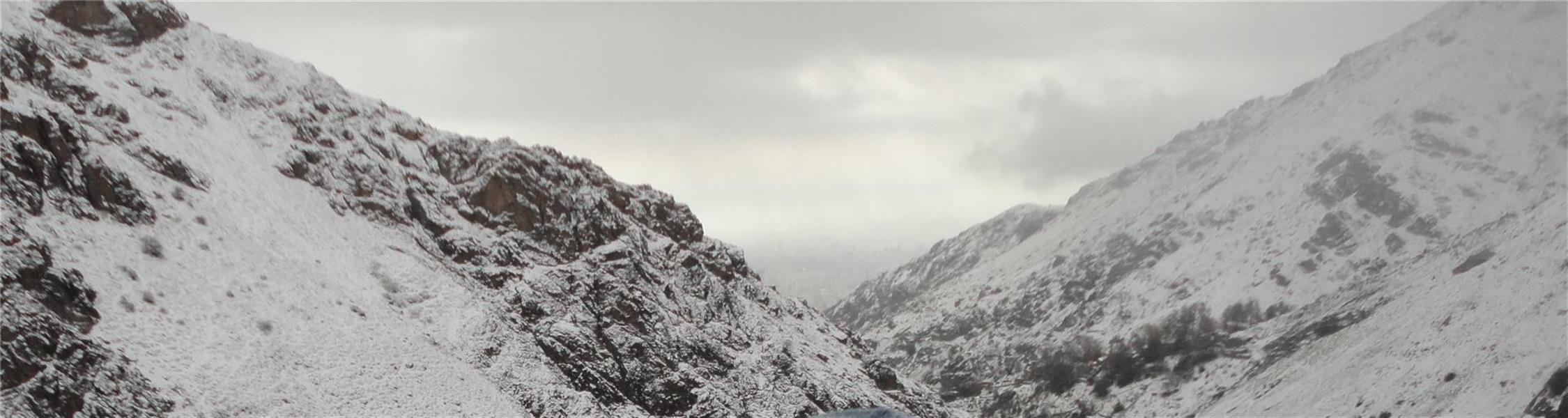 هنر عکاسی زمستان Art is siCk