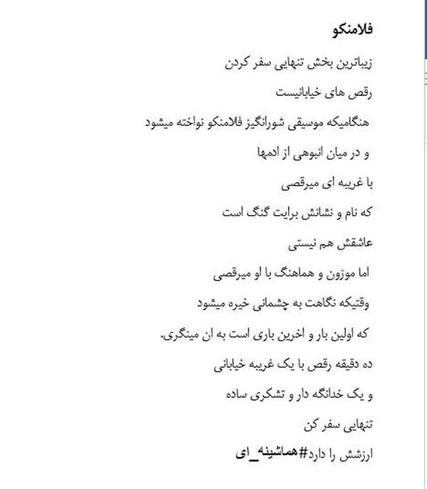 هنر شعر و داستان شعر سفر homaya