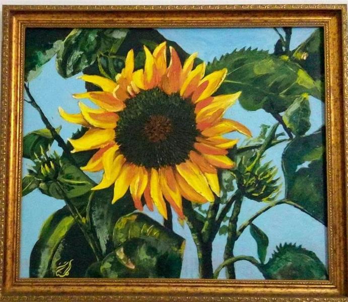 هنر نقاشی و گرافیک نقاشی طبیعت گلستان گل آفتابگردان  باغچه ی پدری