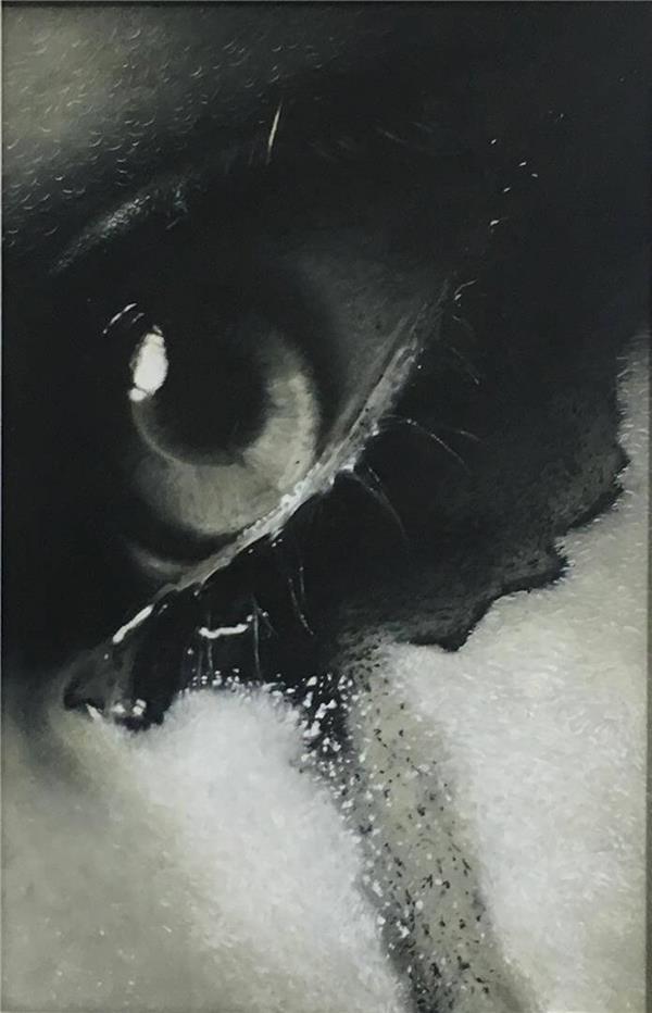 هنر نقاشی و گرافیک گالری اختصاصی هادی پاکتی و آزیتا داور خواه Hadipakati  رنگ روغن بدون عنوان 30 X 40