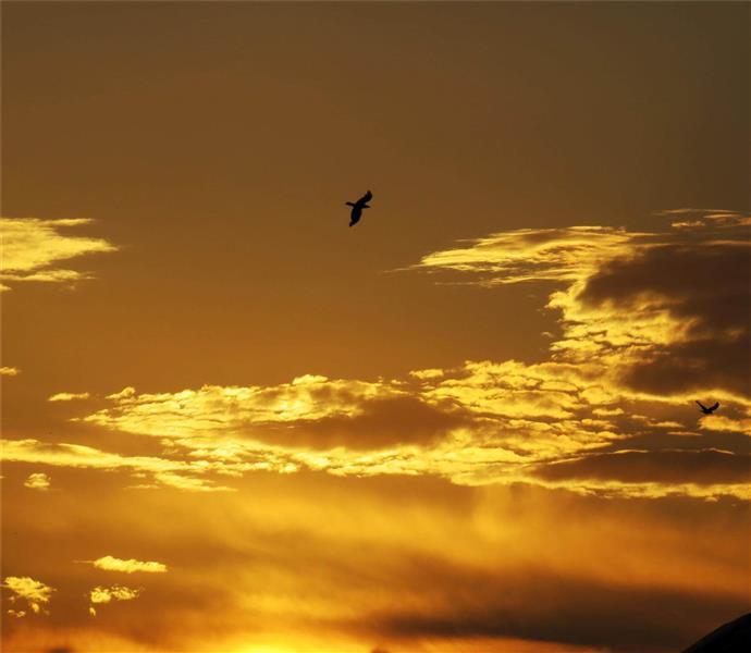 هنر عکاسی آسمان مهناز فلاحی