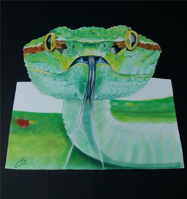 هنر نقاشی و گرافیک نقاشی سه بعدی معصومه لطفی