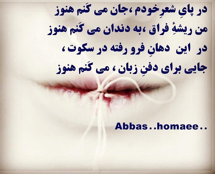 هنر شعر و داستان شعر سکوت abbas--homaee