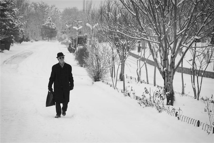 هنر عکاسی برف Meysam