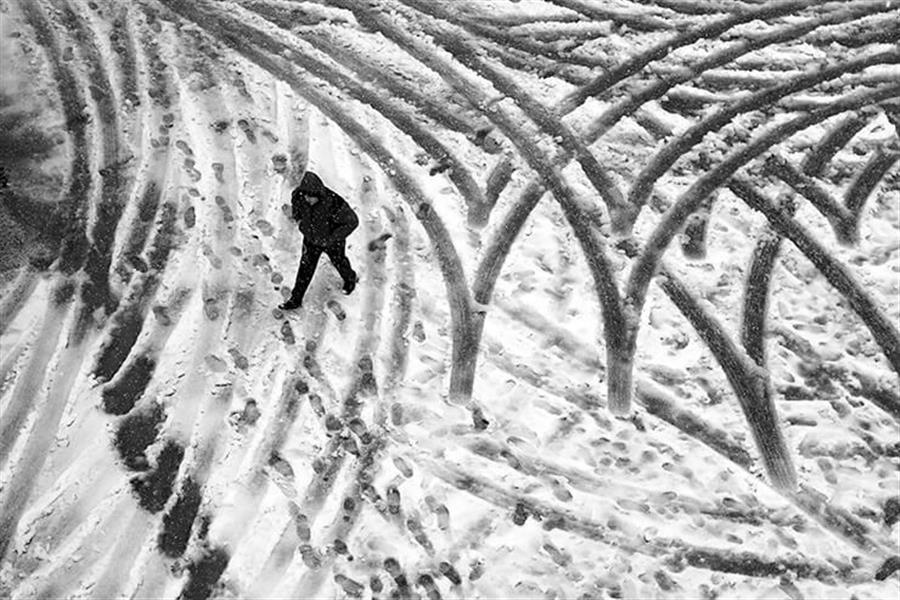 هنر عکاسی برف شمس ناتری