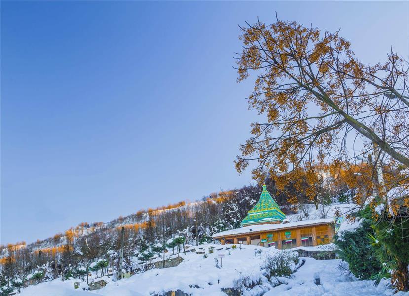هنر عکاسی برف سعید حیدری