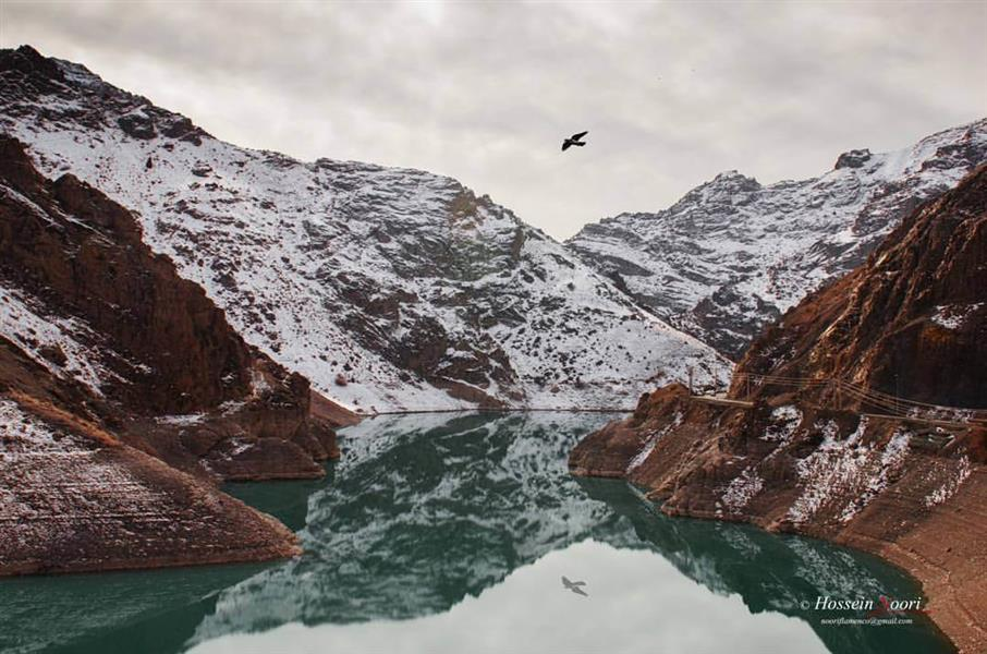 هنر عکاسی برف Nooriflamenco