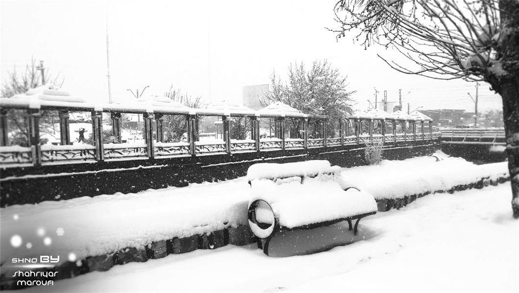 هنر عکاسی برف شهریار معروفی عکس یکی از پارک های شهرستان اشنویه  شهریار معروفی