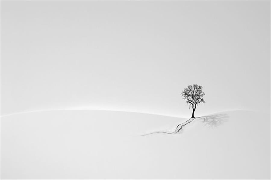 هنر عکاسی برف مریم حسنی