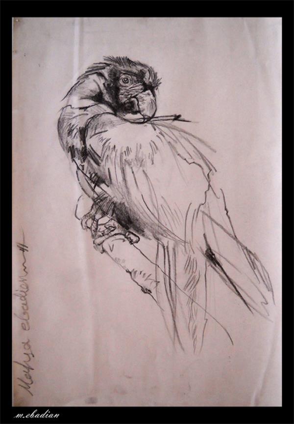 هنر نقاشی و گرافیک نقاشی حیوانات mahsa