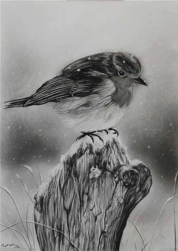 هنر نقاشی و گرافیک نقاشی حیوانات Sajede