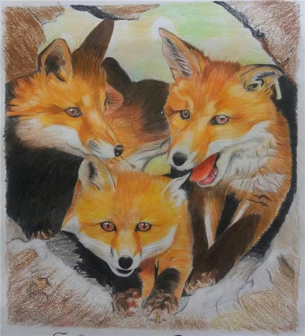 هنر نقاشی و گرافیک نقاشی حیوانات shamim