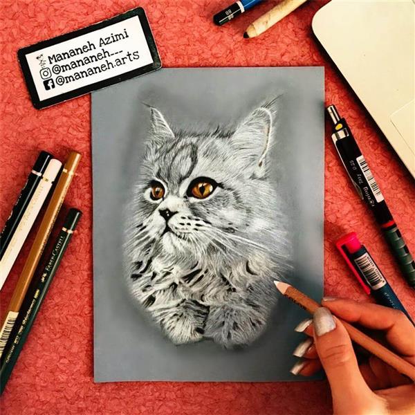 هنر نقاشی و گرافیک نقاشی حیوانات منانه