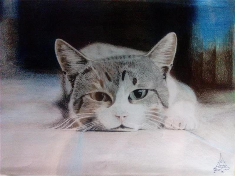 هنر نقاشی و گرافیک نقاشی حیوانات DeMoBlack Art مداد رنگی، سایز A4