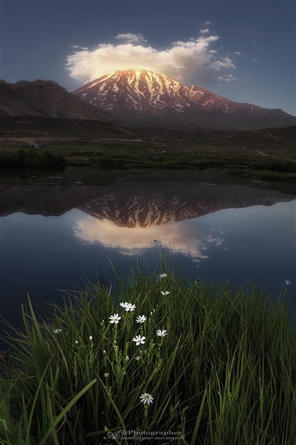 هنر عکاسی محفل عکاسی علی مهزیار مصیبی