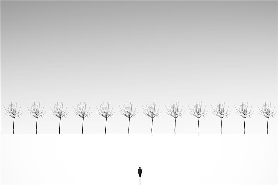 هنر عکاسی محفل عکاسی yones-mahmoudi #مینیمال #مینیمالیسم #سیاه سفید