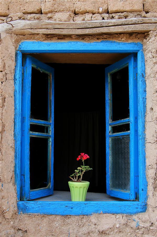 هنر عکاسی محفل عکاسی عباس رحمانی پنجره خاطرات چاپ شده بر روی تخته شاسی #پنجره #شمعدانی #پنجره_چوبی #گل_شمعدانی #خاطره #کودکی