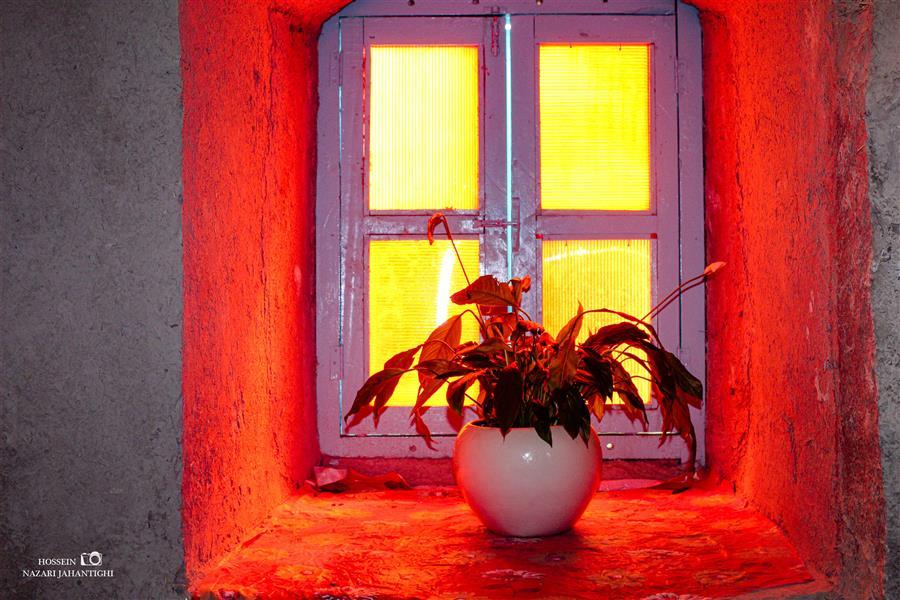 هنر عکاسی محفل عکاسی حسین نظری جهانتیغی پشت این #پنجره یک نامعلوم  نگران من و توست... #فروغ_فرخزاد  عکس : حسین نظری جهانتیغی