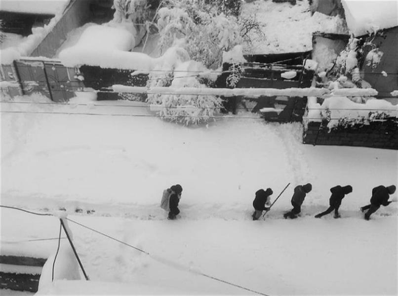 هنر عکاسی محفل عکاسی ghazaleh sadr (برف) برف سال ۱۳۹۸ لاهیجان که شایعه بود کرونا با بارش برف در آن زمان وارد گیلان شد! #عکس با گوشی موبایل گرفته شده و بر روی کاغذ #گلاسه ی ضخیم چاپ گردیده است. عکاس:غزاله صدر