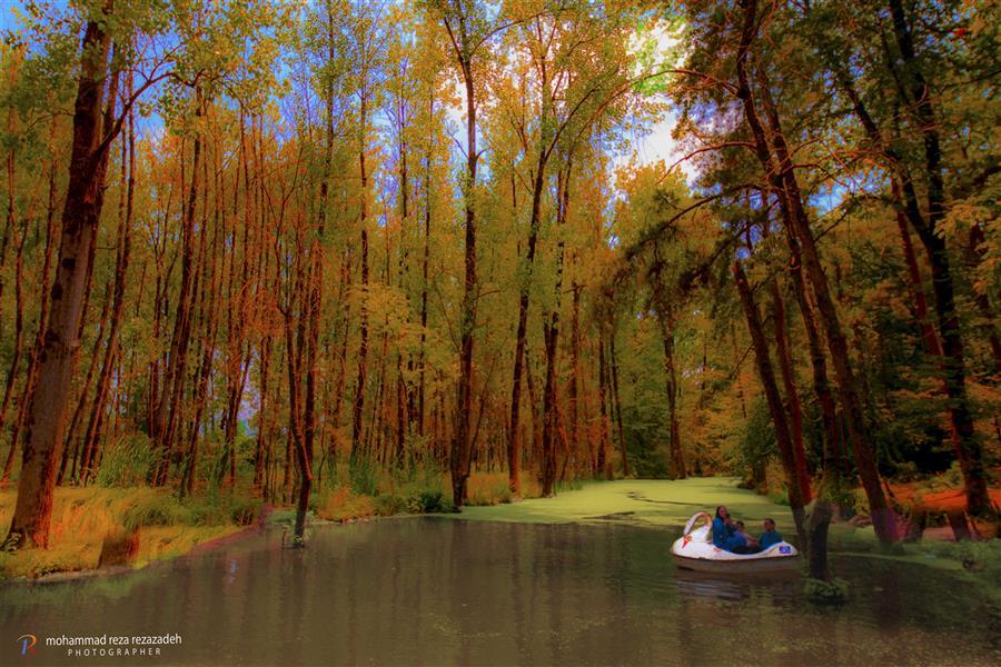 هنر عکاسی محفل عکاسی محمدرضا رضازاده مرداب پارک جنگلی سراوان رشت