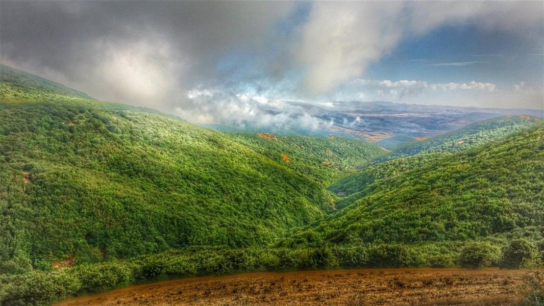 هنر عکاسی محفل عکاسی اشکان صمدی زمین سبز-آسمان آبی