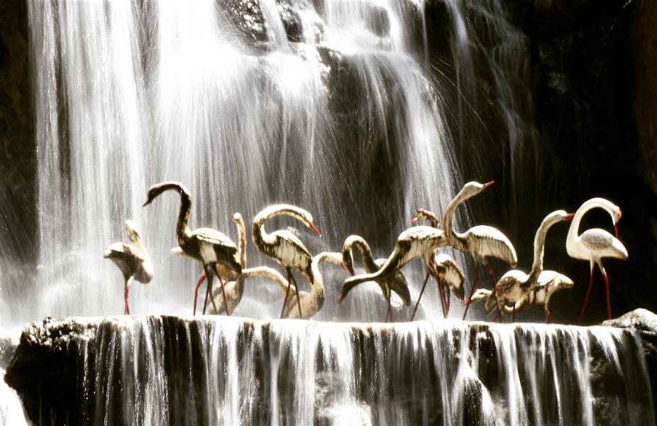 هنر عکاسی محفل عکاسی حسین خرمشاهی #آبشار