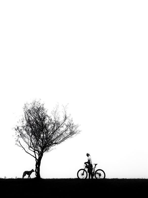 هنر عکاسی محفل عکاسی نسیم رزم آذر