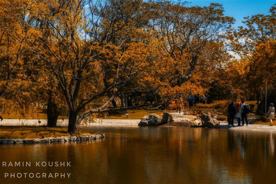 هنر عکاسی محفل عکاسی رامین کوشک سرایی پاییز لطفا خواهشا حمایت کنید ابعاد  ۶۰۰۰×۴۰۰۰