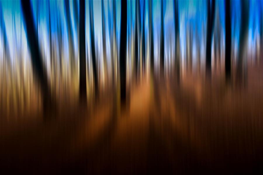 هنر عکاسی محفل عکاسی محمد پوریانی سبک : impression تکنیک : icm #photography#abstract#icm#impression#color