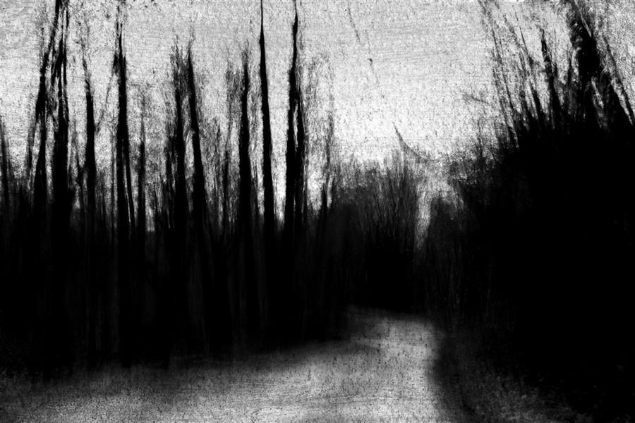 هنر عکاسی محفل عکاسی محمد پوریانی #photography #fineart #icm #abstract #impression #blackandwhite #bnw #dark #shadow #light #landsxape