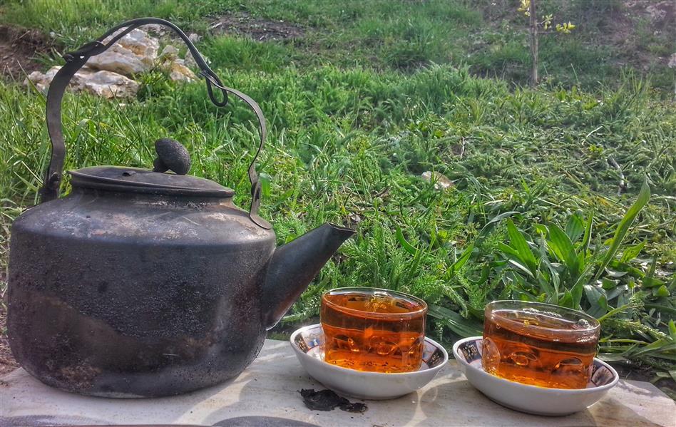 هنر عکاسی محفل عکاسی peshawa alizadeh بفرمایید چایی سردشت،آذربایجان غربی #چایی #سردشت #طبیعت #روژهلات