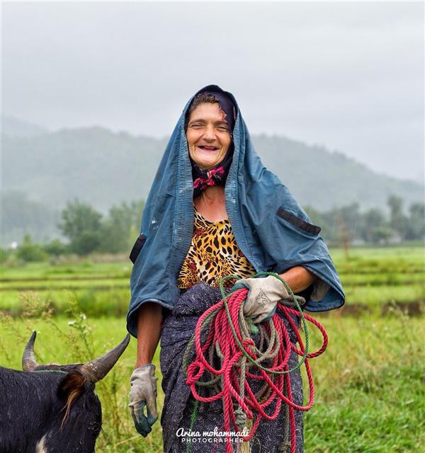 هنر عکاسی محفل عکاسی ArinaMHD  این خانم خوش خنده گیلانی  زیر لب زمزمه میکردن «کار هر بز نیست خرمن کوفتن، گاو نر میخواهد و مرد کهن». این عکس در اطراف ماسوله گرفتم  لبخند عمیق و دوست داشتنی داشتن
