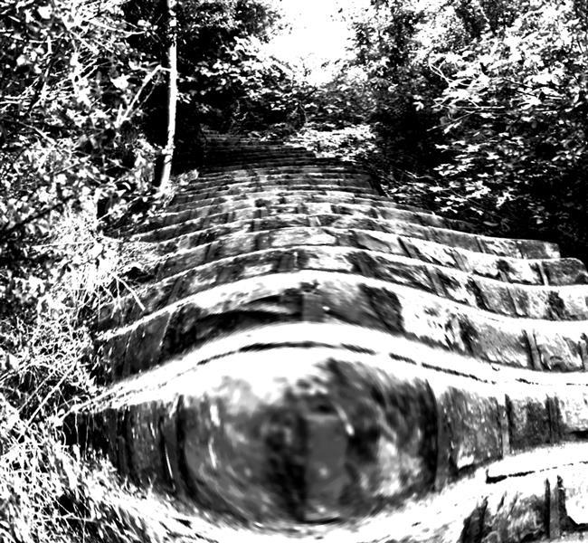هنر عکاسی محفل عکاسی ادریس احمدی 1399 نام اثر:پله های اعجواج عکاس :ادریس احمدی