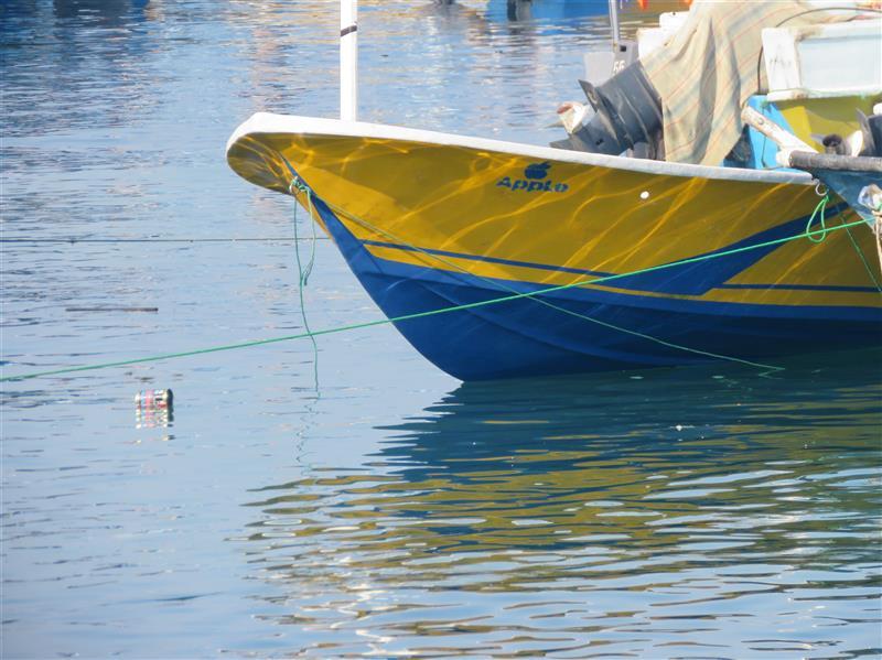 هنر عکاسی محفل عکاسی سارا اسماعیلی #دوربین_عکاسی #قشم #سارا_اسماعیلی #هنر #art#canon #photography#sea