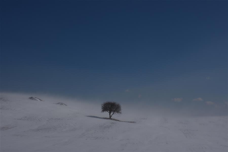 هنر عکاسی محفل عکاسی بهروز احمدیان زمستان