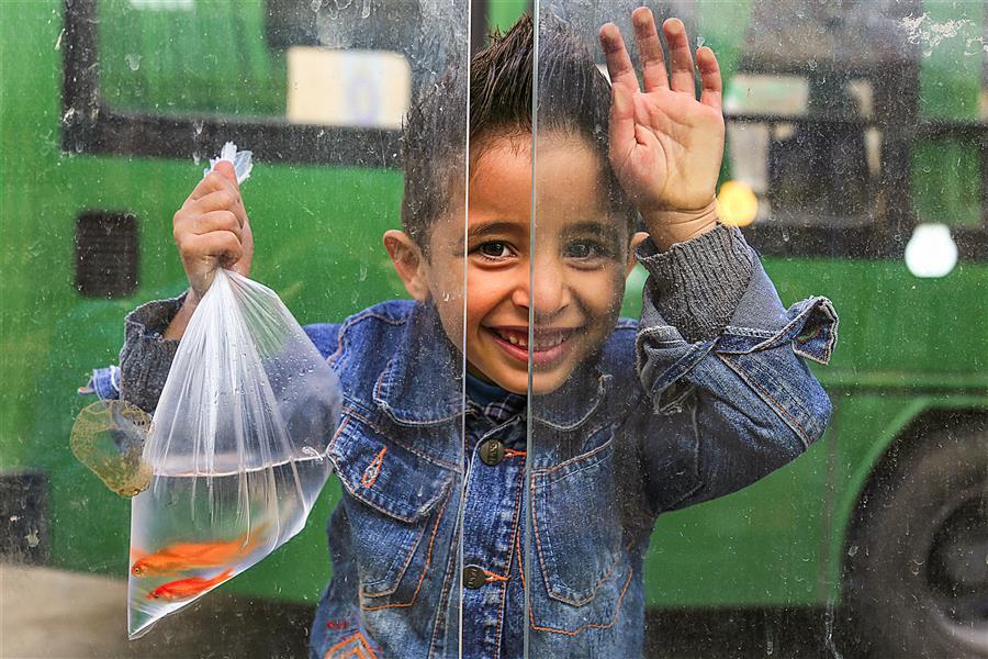 هنر عکاسی محفل عکاسی رضا زنگنه ماهی گلی#کودک#عید