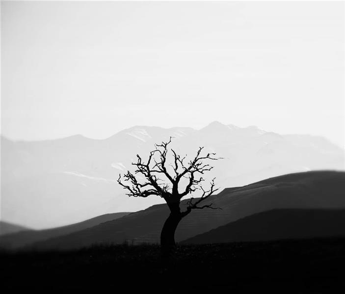 هنر عکاسی محفل عکاسی Kavian Ahmadi #photography #عکاسی