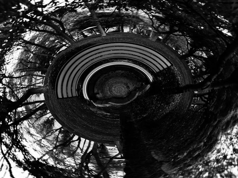 هنر عکاسی محفل عکاسی فائزه ابراهیم نژاد   #سیاره کوچک فائزه ابراهیم نژاد