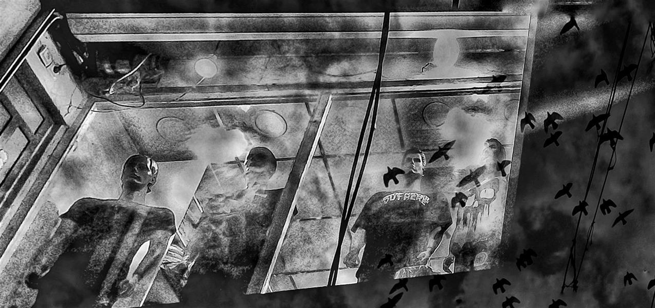 هنر عکاسی محفل عکاسی  نویدسجادی حسینی عکس .نویدسجادی حسینی ماهشهر ۹۹
