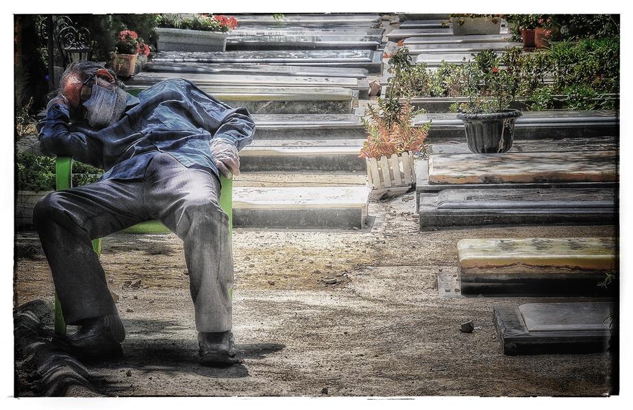 هنر عکاسی محفل عکاسی  نویدسجادی حسینی عکس