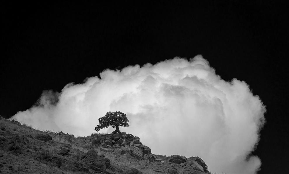 هنر عکاسی محفل عکاسی علی فرجی