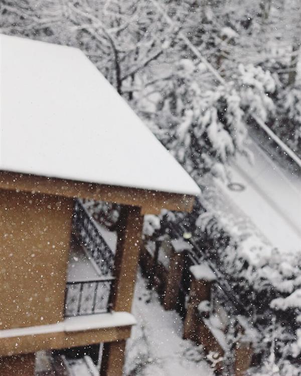هنر عکاسی محفل عکاسی Venu30 برف