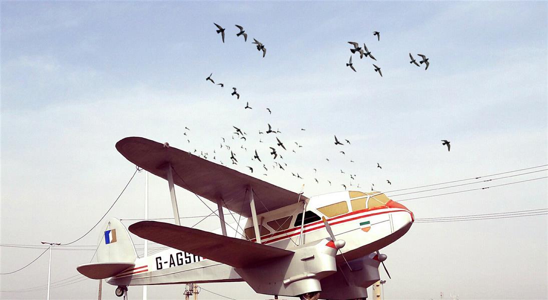 هنر عکاسی محفل عکاسی حامد عقیلی فلکه فرودگاه آبادان - Photo & Edit By : Hamed Aghili