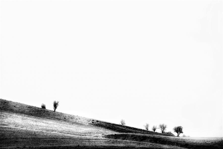 هنر عکاسی محفل عکاسی امیرسالار لاکچی مینیمال