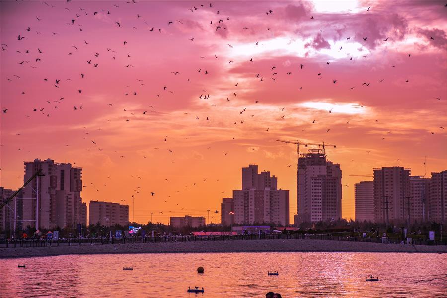 هنر عکاسی محفل عکاسی امیرسالار لاکچی دریاچه خلیج فارس تهران #غروب photo by amirsalar lakchi