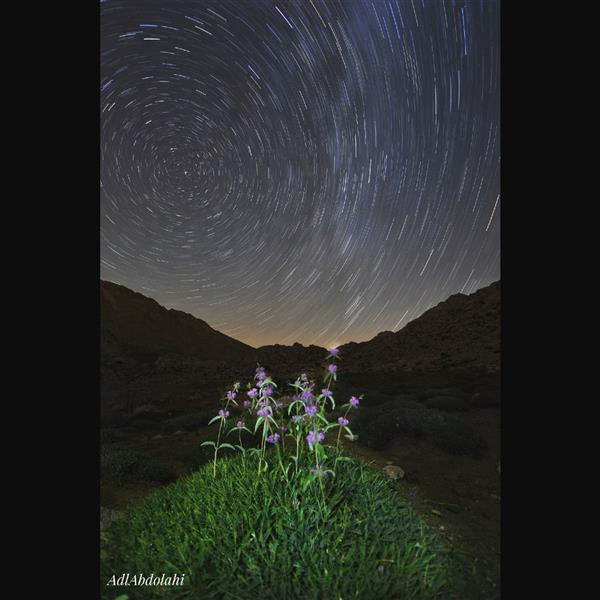 هنر عکاسی محفل عکاسی عادل عبدالهی حرکت ستارگان