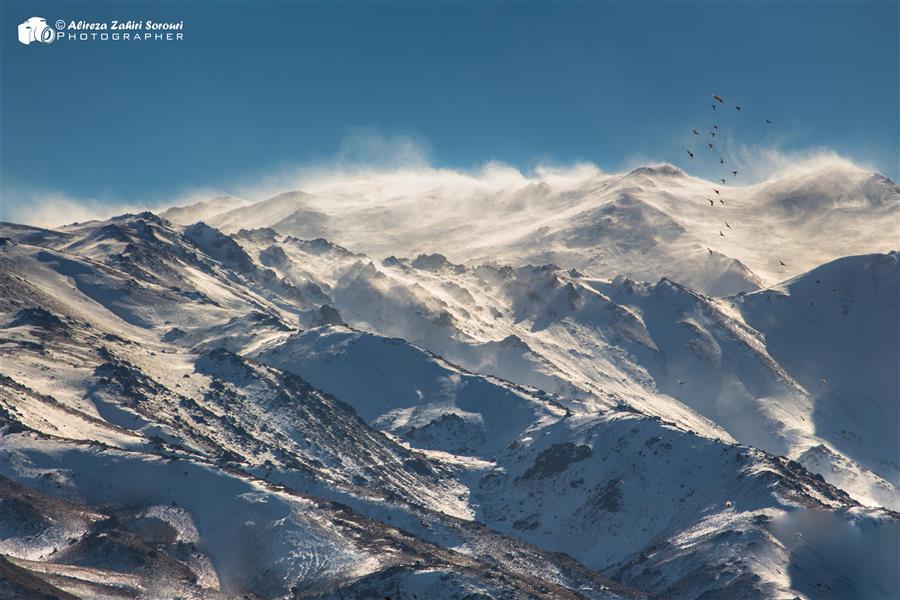 هنر عکاسی محفل عکاسی علیرضا ظهیری سروری #snow #winter #landscape